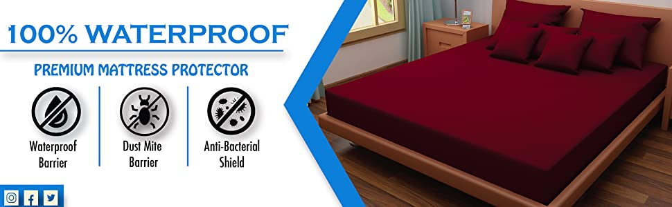 Dream Care Waterproof and Dustproof mattress protector